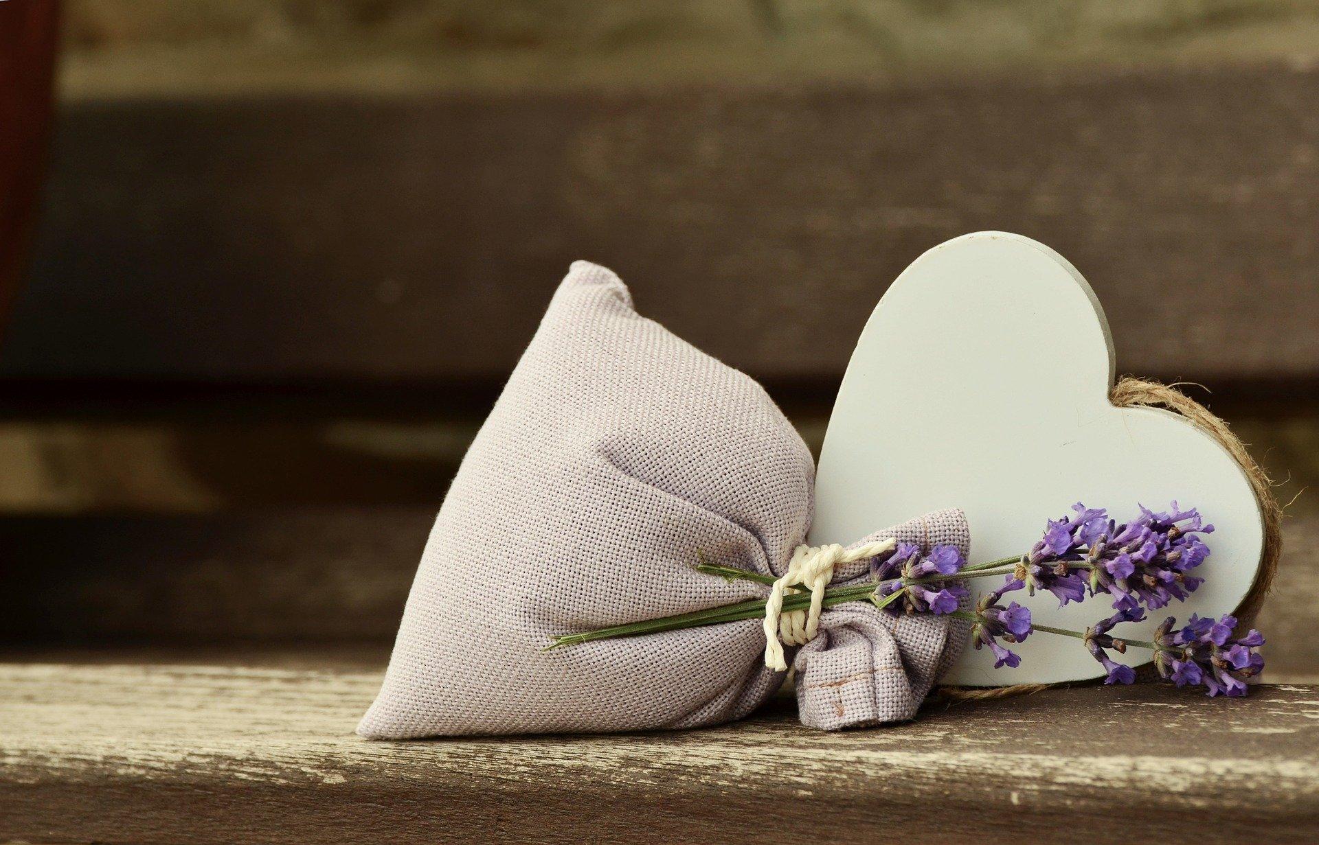15 lavender-823600_1920